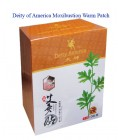 Moxibustion Stickers / Deity of America Moxibustion Warm Patch (Ai Jiu Tie) 10Pieces